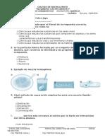 Pruebas de Diagnostico 3 Año Quimica (1)