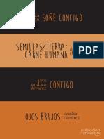 Anzuelos 4.pdf