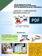 Condicionantes y Componentes Organizacionaales (1)