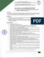 DIRECTIVA DE FINALIZACION ACADEMICA  N 20.pdf