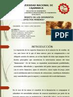 CAPÍTULO X.pptx