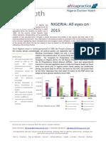 Dawn Dimowo - Africa-InDepth-Nigeria-Election-Watch-All-Eyes-on-2015-Feb20141pdf.pdf