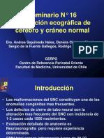 cefalicausg.pdf