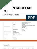 2.1-Generalidades..pptx