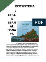 BernalOsnaya JulioCesar M15S2 Mi Ecosistema