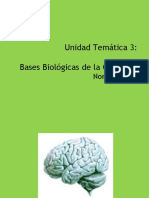 Bases Biologicas Tema 3