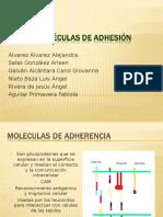 Moleculas de Adhesion Expo