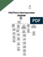 ORGANIGRAMA 2015 SAT