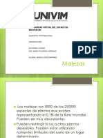 melazas vejetales_LOPEZM_SERGIO.pdf
