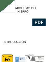 Metabolismo Del Hierro- f