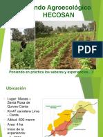 Manejo Ecologico de cultivos Fundo HECOSAN