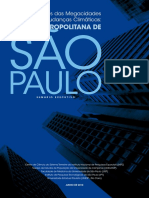 SumarioExecutivo_megacidades