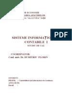 Sisteme Informationale Contabile - Studiu de Caz - SC AtlaSib SRL.doc