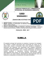 Presentación - Seminario I - Ing. Ambiental - 2017-I