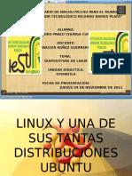 Linux y Una de Sus Tantas Distribuciones Ubuntu