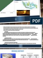 Presentasi Mineral Industri