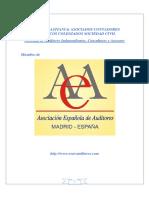 Modelo Auditoria Asociados