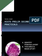 Histo prelim second em 1st practicals.pptx