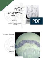 Histology MT Practicals1.pdf