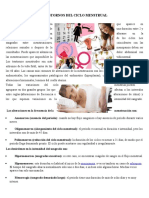 4.-Trastornos Del Ciclo Menstrual