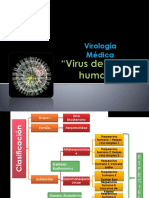 Virus Del Herpes Humano