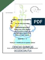 Identificacion de Organelos Celulares