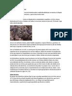 Historia Del Pisco Peru