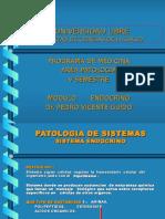 Endocrino Nuevo