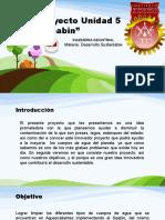 Proyecto  desarrollo sustentable Unidad 5