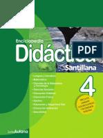 Didactica 4
