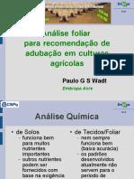 Análise foliar para recomendação adubação - Paulo Wadt.pdf