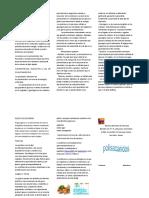 polisacaridos triptico 01