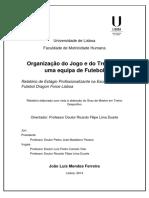 Relatório de Estágio - João Ferreira_13Março.pdf