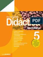 Didactica 5 (1)