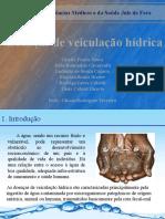 aguas (metais pesados).pptx