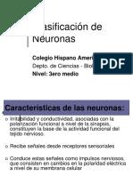 clasif de neuronas_3_2010.pps