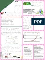 Extracción de plásmido pGLO y GFP.pdf