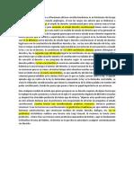 Exposicion Grupo Necontitucionalismo