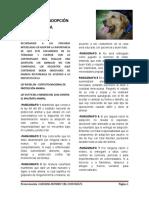 SOLICITUD DE ADOPCIÓN ANIMAL caro.docx