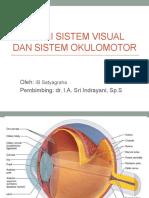 Anatomi Sistem Visual