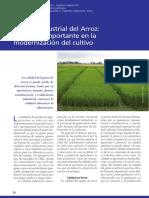 Calidad Industrial del Arroz.pdf