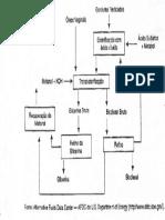 Biodiesel Fluxo Prod