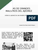 Armando Nerio Hanoi Guédez Rodríguez - Maestros del Ajedrez
