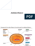 10. antibioticos