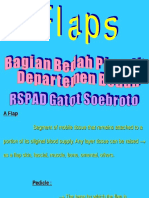 Flaps.ppt