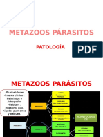 METAZOOS PÁRASITOS.pptx