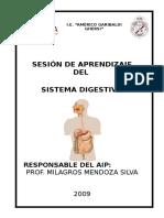 Sesion de Aprendizaje Sobre Sistema Digestivo 2017