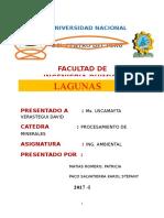 TRATAMIENTO-DE-AGUA-RESIDUALES-IMP.docx