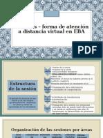 17. Sesiones Forma de Atención a Distancia Virtual