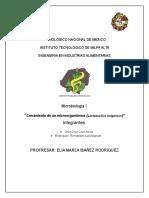 """""""Crecimiento de Un Microorganismos (Lactobacillus Bulgaricus)"""""""